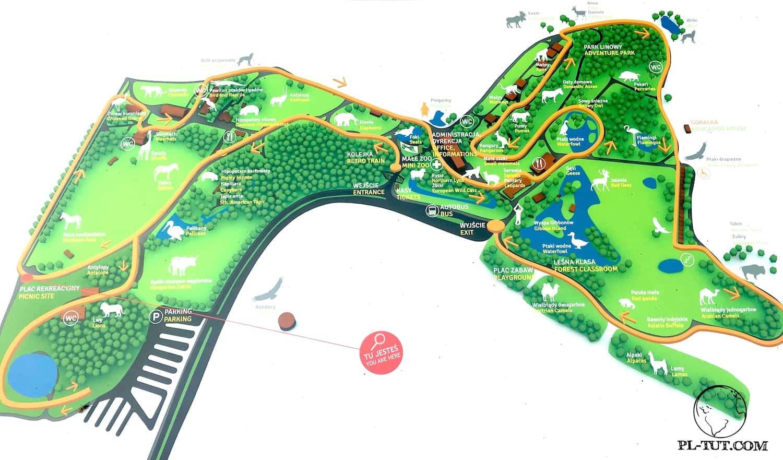 Схема территории зоопарка Олива (Гданьск, Польша)
